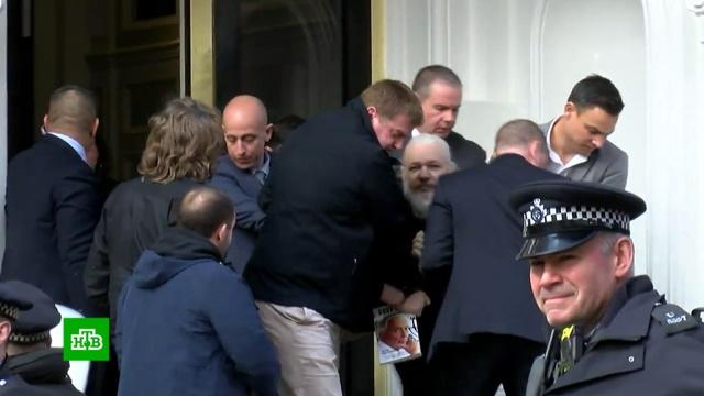 Все против Ассанжа: что ждет основателя WikiLeaks после ареста.WikiLeaks, Ассанж, Великобритания, США, Швеция, аресты.НТВ.Ru: новости, видео, программы телеканала НТВ