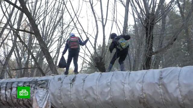 Детям из Новосибирска пришлось ходить в школу по трубам теплотрассы.дети и подростки, дороги, Новосибирск.НТВ.Ru: новости, видео, программы телеканала НТВ