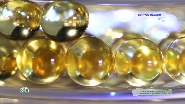 Рыбий жир ирыбный жир— вчем отличия?НТВ.Ru: новости, видео, программы телеканала НТВ