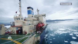Территория обогащения: Арктика становится новой ареной борьбы за господство