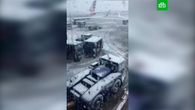В Чикаго отменили более 600 рейсов из-за снежной бури.США, аэропорты, погода, снег.НТВ.Ru: новости, видео, программы телеканала НТВ