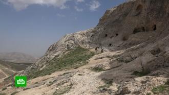 В Сирии восстанавливают туристические маршруты к древним памятникам.Сирия, памятники, история, туризм и путешествия, выставки и музеи.НТВ.Ru: новости, видео, программы телеканала НТВ