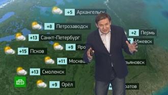 Утренний прогноз погоды на 17апреля