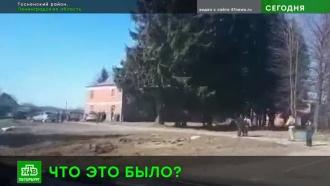 Информация о падении легкомоторного самолета в Ленобласти не подтвердилась