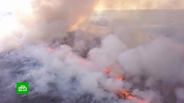 Не надо огня: опасные последствия пала травы.лесные пожары, пожары, экология.НТВ.Ru: новости, видео, программы телеканала НТВ