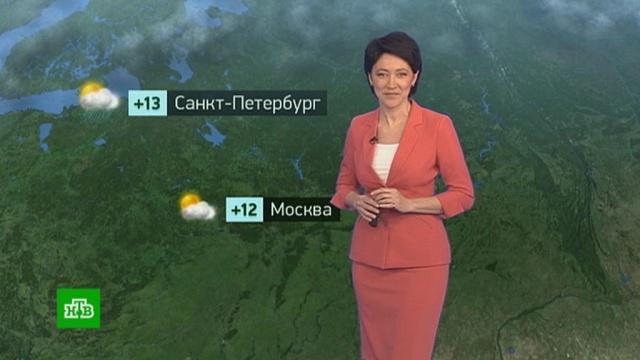 Утренний прогноз погоды на 19преля.Москва, Санкт-Петербург, погода.НТВ.Ru: новости, видео, программы телеканала НТВ