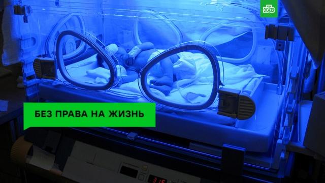 Предсказатель смерти: девайс, который привел вужас ученых.НТВ.Ru: новости, видео, программы телеканала НТВ