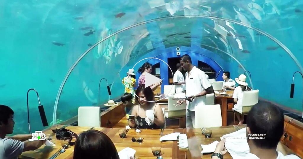 Ужин внаручниках или под водой: самые необычные рестораны ивнутренняя кухня общепита