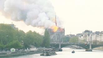 Пожар в Нотр-Даме: какие части собора утрачены безвозвратно