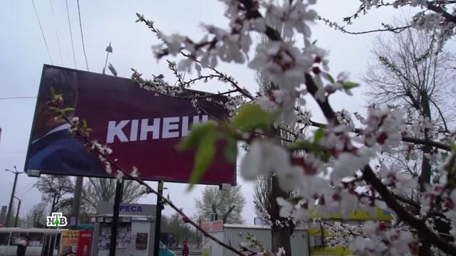 Времени на раскачку немного: чем для Украины обернется победа Зеленского.Зеленский, Порошенко, СМИ, Украина, выборы.НТВ.Ru: новости, видео, программы телеканала НТВ
