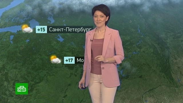 Утренний прогноз погоды на 22апреля.Москва, Санкт-Петербург, погода.НТВ.Ru: новости, видео, программы телеканала НТВ