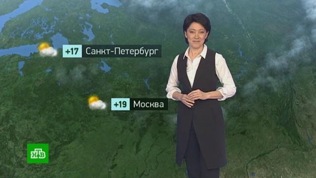 Утренний прогноз погоды на 23апреля.Москва, Санкт-Петербург, погода.НТВ.Ru: новости, видео, программы телеканала НТВ