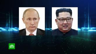 Во Владивосток перед визитом Ким Чен Ына прилетела его сестра