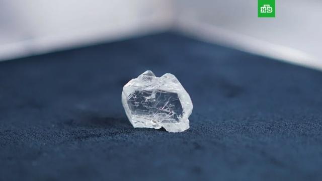 В Якутии нашли гигантский алмаз: фото.Работники рудника «Интернациональный» в Якутии добыли самый крупный алмаз ювелирного качества за последние два года.Якутия, алмазы, шахты и рудники.НТВ.Ru: новости, видео, программы телеканала НТВ