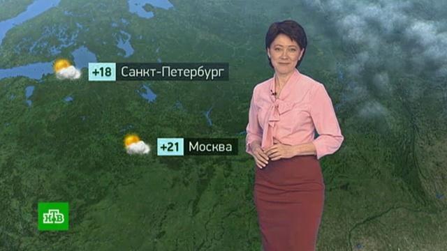 Утренний прогноз погоды на 24 апреля.Москва, Санкт-Петербург, погода.НТВ.Ru: новости, видео, программы телеканала НТВ