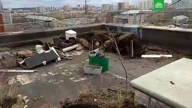 В Екатеринбурге коммунальщики разрушили сад на крыше многоэтажки.НТВ.Ru: новости, видео, программы телеканала НТВ