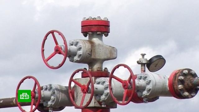«Транснефть»: загрязнение «Дружбы» было умышленным.Белоруссия, Польша, Украина, нефтепровод, нефть.НТВ.Ru: новости, видео, программы телеканала НТВ