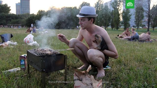 Памятка любителям шашлыков: как не нарваться на штраф.законодательство, кулинария, пожарная охрана.НТВ.Ru: новости, видео, программы телеканала НТВ