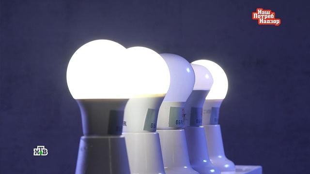 Какие энергосберегающие лампы действительно помогают экономить.еда, магазины, торговля.НТВ.Ru: новости, видео, программы телеканала НТВ