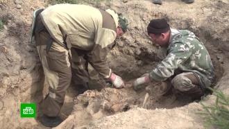 Почти 500волонтеров приехали вКалужскую область на поиски останков солдат