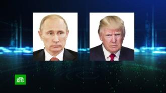Путин иТрамп провели телефонный разговор