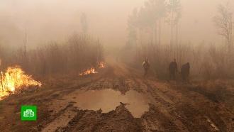 Площадь природных пожаров вИркутской области за сутки выросла более чем вдвое