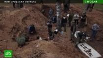 Тайны братской могилы: кто превратил новгородскую деревню вОсвенцим