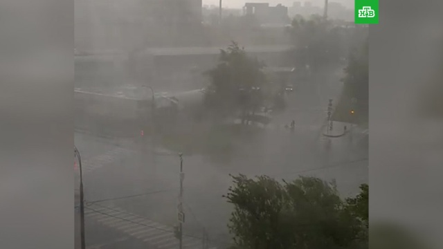 Мощная гроза в Москве: есть пострадавшие.Москва, погода.НТВ.Ru: новости, видео, программы телеканала НТВ