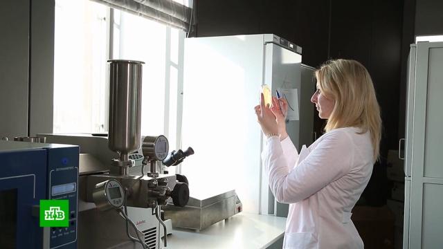 Три научно-образовательных центра откроются вРоссии до конца года.наука и открытия.НТВ.Ru: новости, видео, программы телеканала НТВ