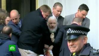 Кому достанется Ассанж: Швеция включилась вборьбу сСША за основателя WikiLeaks