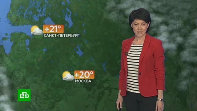Прогноз погоды на 18мая.погода, прогноз погоды.НТВ.Ru: новости, видео, программы телеканала НТВ