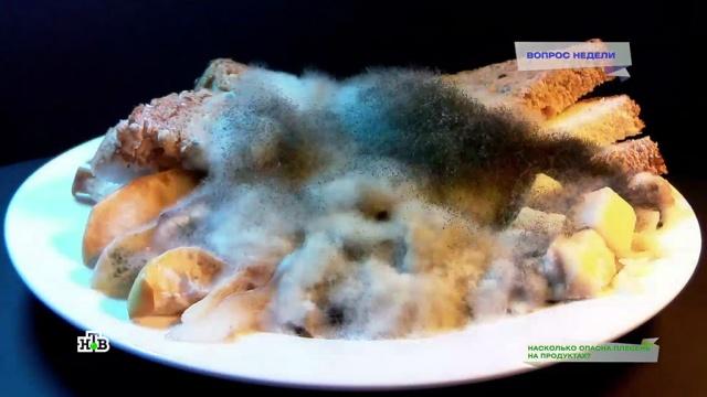 Плесень на продуктах: правда имифы огрибке на еде.НТВ.Ru: новости, видео, программы телеканала НТВ
