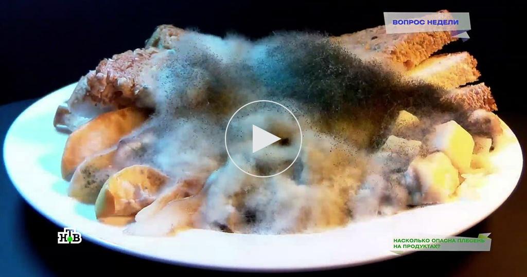 Плесень на продуктах: правда имифы огрибке на еде