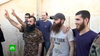 В Алеппо 9 пленных боевиков обменяли на 10 сирийских граждан
