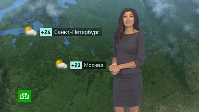 Утренний прогноз погоды на 20мая.Москва, Санкт-Петербург, погода, прогноз погоды.НТВ.Ru: новости, видео, программы телеканала НТВ