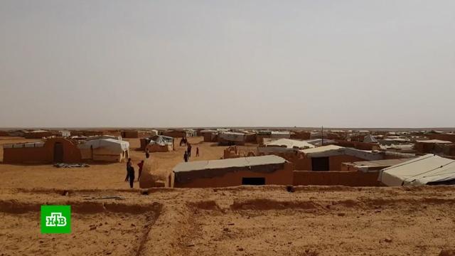 Беженцы в «Рукбане» получили медпомощь и продукты.Сирия, беженцы, войны и вооруженные конфликты.НТВ.Ru: новости, видео, программы телеканала НТВ