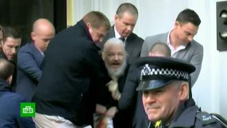 Шведская прокуратура направила запрос на арест Ассанжа