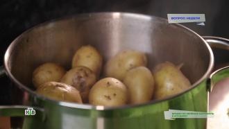 Зеленый картофель вмундире: насколько токсичен такой продукт
