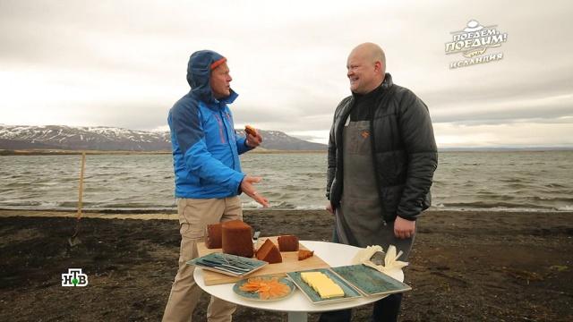 Ведущий «Поедем, поедим!» попробовал вулканический хлеб вИсландии.Исландия, еда, телевидение, туризм и путешествия, эксклюзив.НТВ.Ru: новости, видео, программы телеканала НТВ
