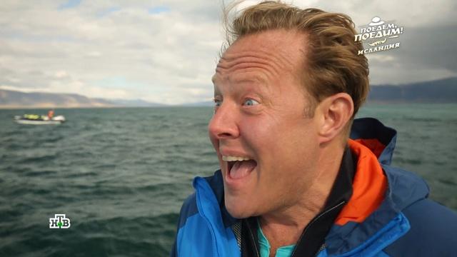 Джон Уоррен впервые за 7 лет съемок «Поедем, поедим!» увидел китов.Исландия, киты, туризм и путешествия, эксклюзив.НТВ.Ru: новости, видео, программы телеканала НТВ