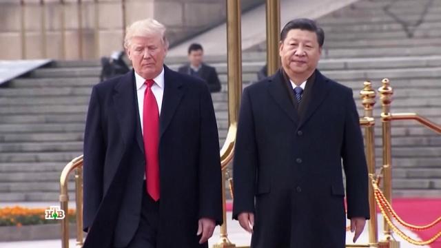 Торговая война Трампа с Китаем: что ждет США.Китай, США, Трамп Дональд, панды, торговля, экономика и бизнес.НТВ.Ru: новости, видео, программы телеканала НТВ