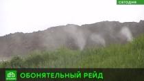 С ароматом лесных трав: чем пахнет полигон сточных вод в Петербурге