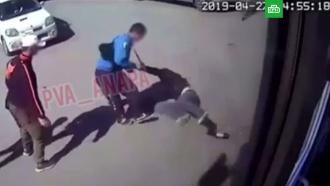 Полиция проверяет видео сжестоким избиением мужчины вАнапе