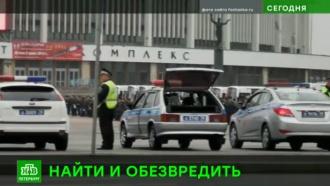 Полиция Петербурга провела масштабный рейд по рынкам и овощебазам