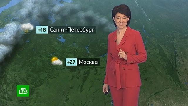 Утренний прогноз погоды на 29 мая.Москва, Санкт-Петербург, погода, прогноз погоды.НТВ.Ru: новости, видео, программы телеканала НТВ
