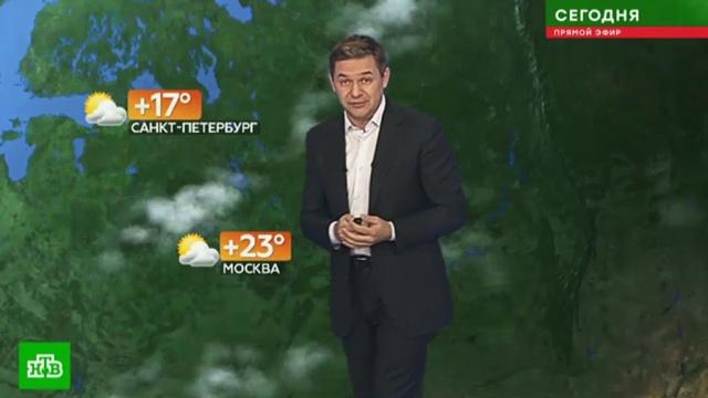 Прогноз погоды на 1 июня.Москва, погода, прогноз погоды, Санкт-Петербург.НТВ.Ru: новости, видео, программы телеканала НТВ