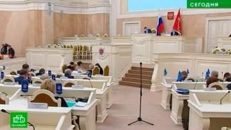 Депутаты, режиссер, врио: кто намерен стать кандидатом в губернаторы Петербурга