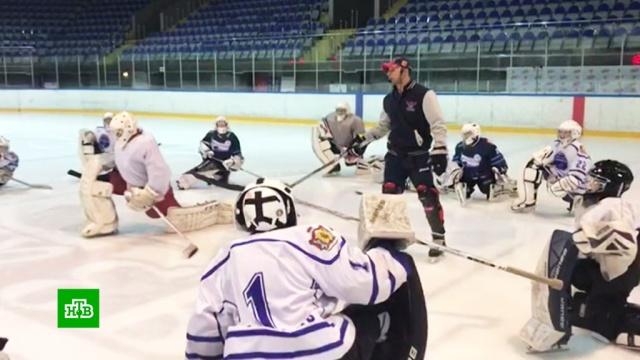 Хоккеисты судятся с ВХЛ из-за возрастного лимита.спорт, суды, хоккей.НТВ.Ru: новости, видео, программы телеканала НТВ