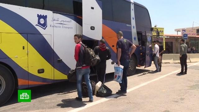 В Сирии почти полностью восстановили автобусное сообщение.Сирия, автобусы, войны и вооруженные конфликты, общественный транспорт.НТВ.Ru: новости, видео, программы телеканала НТВ