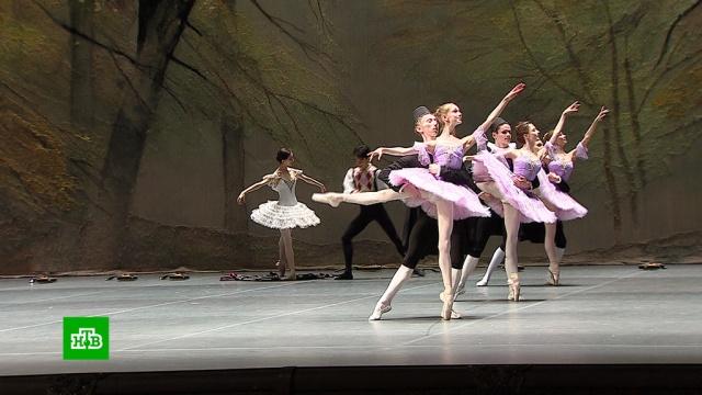 Будущие звезды балета выступили на сцене Большого театра.Большой театр, балет.НТВ.Ru: новости, видео, программы телеканала НТВ
